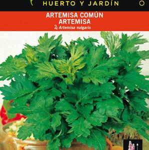 ARTEMISA COMUN