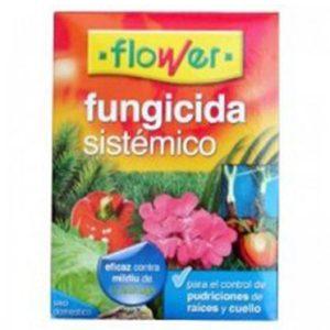 FUNGI SIST FLOWER