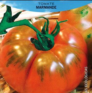 TOMATE MARMADE