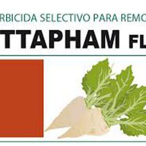 bettapham-flow