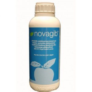 novagib-538453