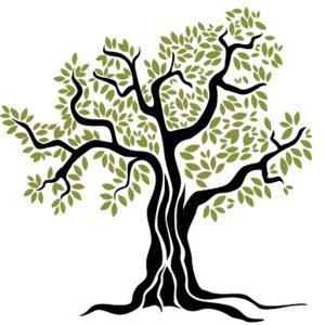 olivo-cornicabra