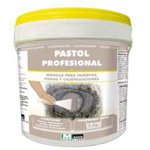 pastol (1)