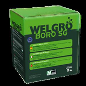 welgro-boro-sg