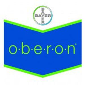 oberon-insecticida-bayer___oberon_25111457