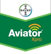 Brandtag_AviatorXPro