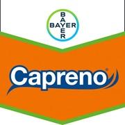 Brandtag_Capreno