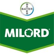 Brandtag_Milord