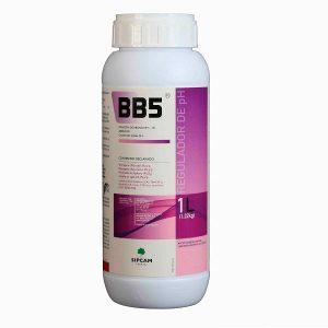 bb5 1l