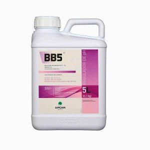 bb5 5
