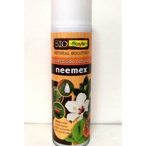 neemex flower